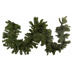 Fenyő girland evergreen